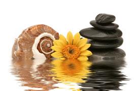 Massage mit warmen Steinen - Hot Stone Massage